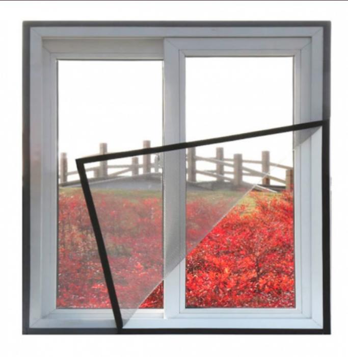 plase geam [1]