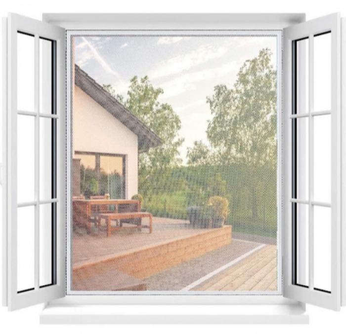 plase geam [2]