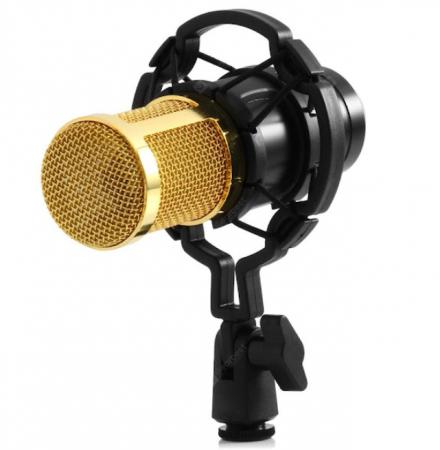 microfon [0]