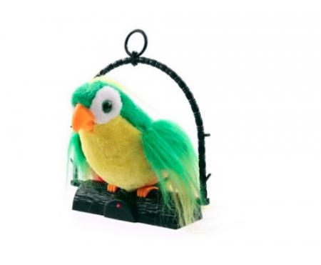 papagal vorbitor [0]