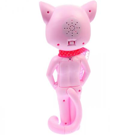 pisica [2]