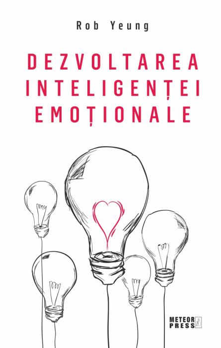Dezvoltarea inteligentei emotionale [0]
