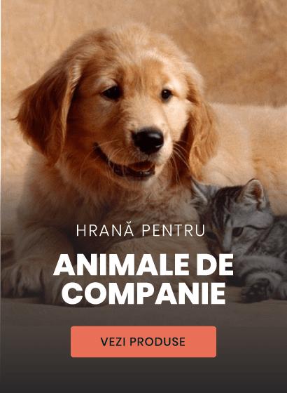 hrana pentru animale de companie