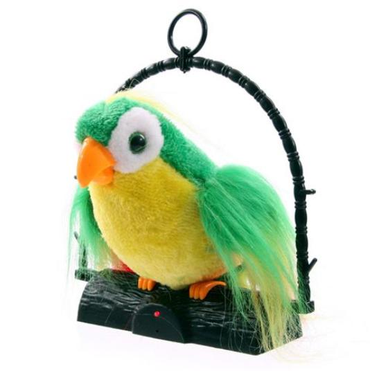 papagal vorbitor [1]