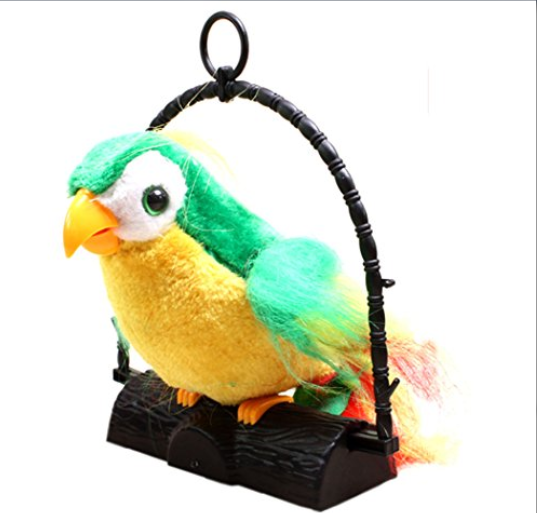 papagal vorbitor [2]